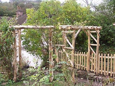 Sweet Chestnut rose arches, fencing and gate