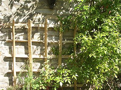 Wall mounted paling trellis