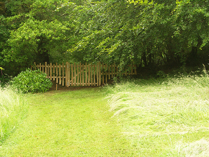 Chestnut picket fencing on a woodland boundary