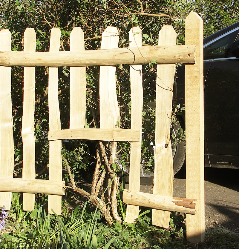 Cleft Chestnut picket fence incorporating a shrub hole