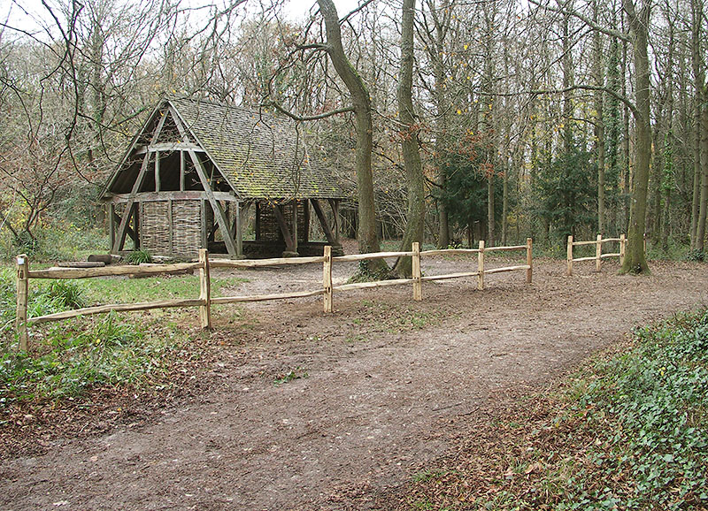 Cleft chestnut post and rail fencing in a woodland setting