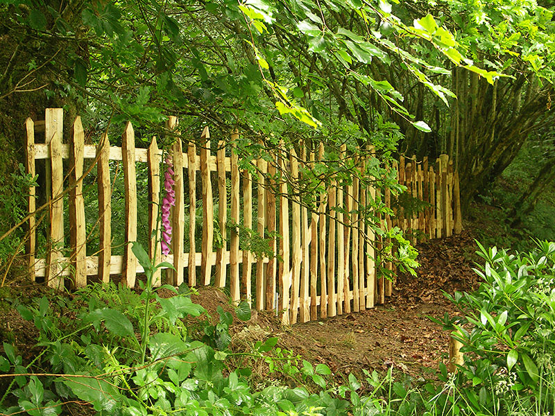 Close up view of Chestnut picket fencing on a woodland boundary