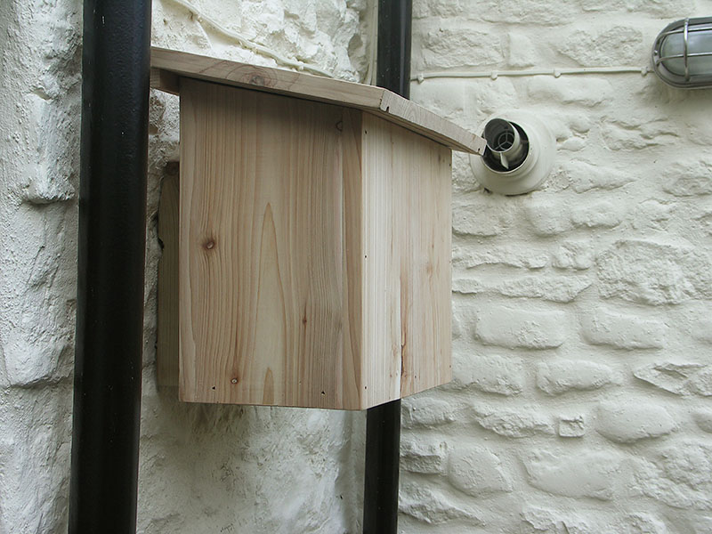Wall mounted letter box in kiln-dried cedar